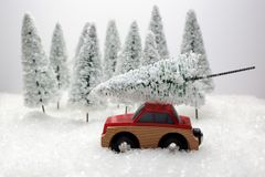 Car carrying a Christmas tree in a snow covered miniature evergreen forest. Red car carrying a Christmas tree in a snow covered miniature evergreen forest Royalty Free Stock Photo