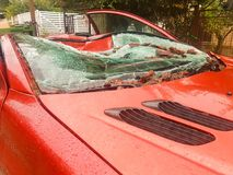 Red car destroyed by a tree after a strong storm. Royalty Free Stock Images