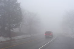 Red Car Driving in Thick Fog. Image of a red vehicle driving away into thick fog on a cold wet winter afternoon. There is a pine tree by the edge of a wet Royalty Free Stock Images