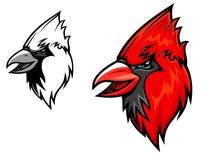 Cardinal birds Royalty Free Stock Images
