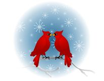 Red Cardinals Sitting In Tree. A clip art illustration of 2 red cardinal birds sitting on a branch in winter with beaks touching to represent friendship or love Royalty Free Stock Photo