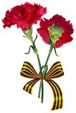 Red carnation flower bouquet and St. George ribbon symbol Russian victory day. Isolated on white vector illustration stock illustration