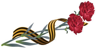 Red carnation flower and St. Georges ribbon. Symbol of Victory Day. Isolated on white vector illustration Stock Photography