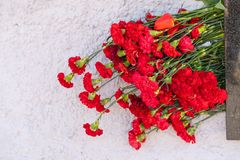 Red carnation flowers at the memorial to fallen soldiers in the world war II stock images