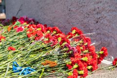 Red carnation flowers at the memorial to fallen soldiers in the world war II royalty free stock photography
