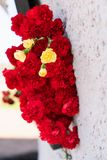 Red carnation flowers at the memorial to fallen soldiers in the world war II royalty free stock images