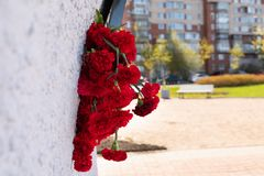Red carnation flowers at the memorial to fallen soldiers in the world war II stock image