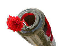 Red Carnation in the muzzle of the gun barrel Stock Photo