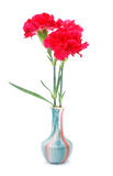Red carnation vase. A red carnation vase is interior Royalty Free Stock Photography