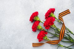 Red carnations and St. George ribbon on a concrete background. Symbol may 9, victory day Copy space. Red carnations and St. George ribbon on a concrete stock image