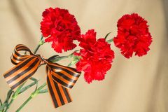 Red carnations tied Georgievsky tape Stock Photography