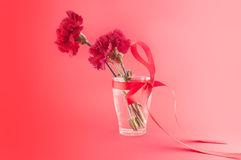 Red carnations in vase with ribbon on a red background. Stock Image