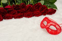 Red carnival mask lies on a white fur in the background of a bouquet of roses.  Royalty Free Stock Image
