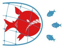 Big fish in a fishing net. Red carnivore fish caught in the net and three small fishes look at it. Anti monopoly illustration Stock Image
