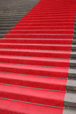 Red carpet. As used for official ceremonies Stock Photo