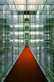 Red Carpet. In modern office building Stock Image