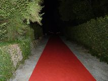 Red carpet final party royalty free stock image