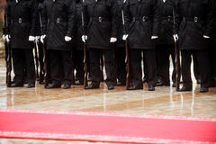 Red carpet military ceremony Royalty Free Stock Image
