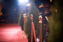 Red carpet -  is traditionally used to mark the route taken by heads of state on ceremonial and formal occasions.  Royalty Free Stock Photo