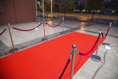 Red carpet. Between two rope barriers Royalty Free Stock Image