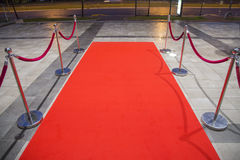 Red carpet. Between two rope barriers Stock Images