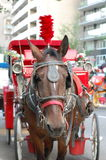Red Carriage Horse in New York City Stock Photo