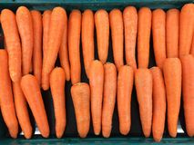 Red Carrots Royalty Free Stock Photography