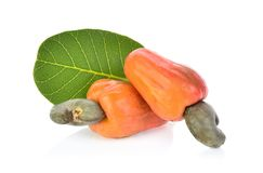 Red cashew fruit isolated on white background.  stock photography