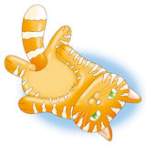Red cat. A nice red striped cat Stock Photography