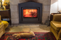 Red cat is basking by the fireplace in the cozy room. Stock Photo