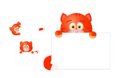 Red cat with blank sign Stock Images