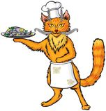 Red cat chef. The fish dish Royalty Free Stock Images