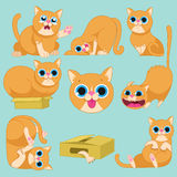 Red cat in different emotions. Cat characters. Cartoon vector illustration.Set of 9 stickers cat, handmade. Head cat. Icons with cat.Set Cute Cat Royalty Free Stock Photos