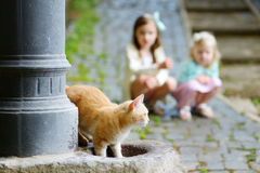 Red cat drinking out of city fountain with two kids watching in a background Royalty Free Stock Photos