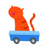 Red cat driving its litter box at speed Stock Photography