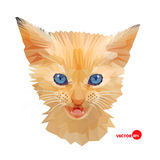 Red Cat face with blue eyes, portrait made in polygonal style. Kitten face head. Cats in the low poly for design, T Stock Images