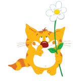 Red_cat_with_flower Royalty Free Stock Image