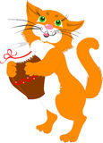 Red cat with a jug of milk Stock Images