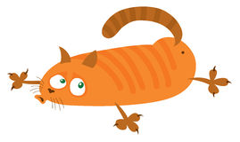 Red cat lies on the belly Royalty Free Stock Images
