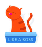Red cat in a litter box labelled Like A Boss Royalty Free Stock Images