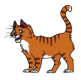 Red cat male. Vector illustration of a cartoon red cat male Royalty Free Stock Photo