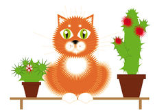 Red Cat and Plants. Red cat sitting on a bench among the flowering cactuses Royalty Free Stock Photos