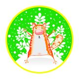 Red cat on a round card Stock Images