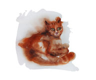 Red cat sitting  original wet watercolor illustration Stock Image
