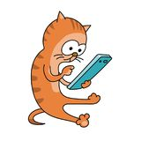 Red cat with a smartphone. Red striped cat sitting on the floor with a smartphone. Press the button. White background Stock Images