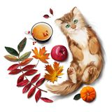 Red cat, tea, apple and autumn leaves. Watercolor painting royalty free illustration