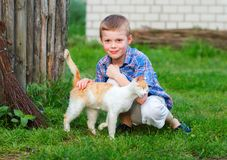 Red cat tenderly rubs against the hand of a little boy.  Royalty Free Stock Photos