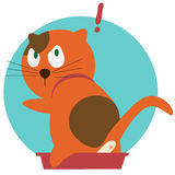 Red cat in toilet Royalty Free Stock Image