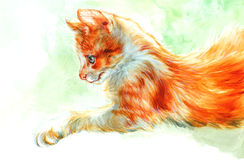 Red cat. Watercolour - red cat sitting in the grass Royalty Free Stock Image