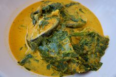 Red catfish curry fish royalty free stock images